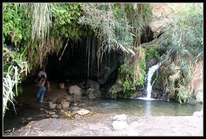 Пещера над водопадом Давида - Заповедник Эйн Геди